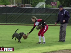 Dog-Steals-Show-at-WOU-Soft