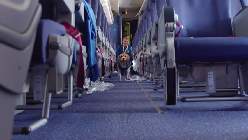 KLM Lost _ Found service.mp4_000044920