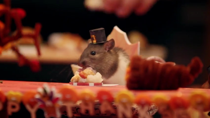 A Tiny Hamster Thanksgiving (Ep. 4).mp4_000044753