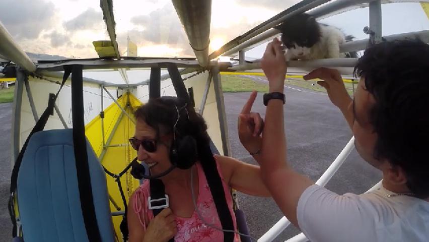 flyingcat-6